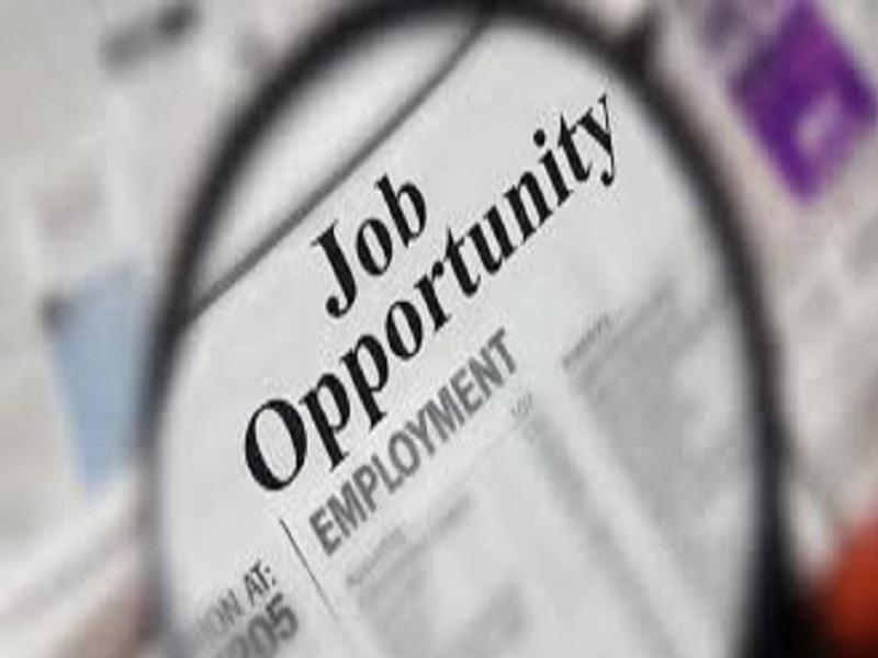 Job Opportunity: Political Adviser/Speechwriter (EUSR)