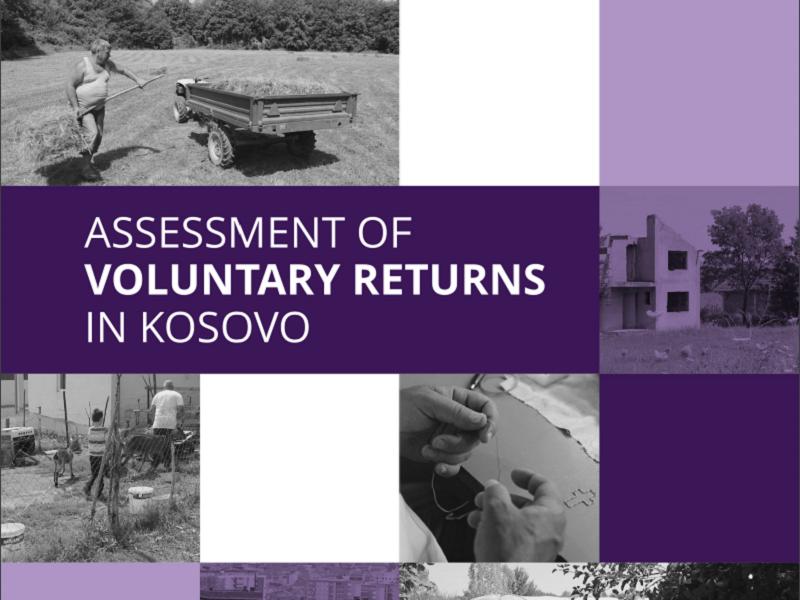 Assessment of Voluntary Returns in Kosovo / OSCE